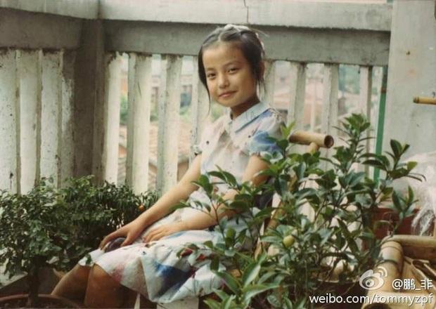 2 nàng Mulan Triệu Vy - Lưu Diệc Phi: Bê bối dài 20 năm, đời tư sặc thuyết âm mưu, người giật bồ kẻ vướng tin đồn yêu đồng tính - Ảnh 9.