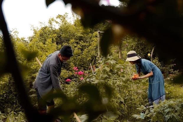 Bỏ thành phố lên Tây Nguyên nuôi cá, trồng rau: Cặp đôi Sài Gòn khiến tất cả ngưỡng mộ với cuộc sống tựa cổ tích - Ảnh 5.