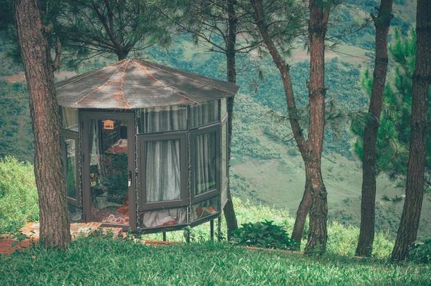 Lập kèo check in ngay Đà Lạt thu nhỏ cạnh Tà Xùa với đủ thung lũng, cây thông cô đơn và biển mây chill chẳng kém bản gốc - Ảnh 1.
