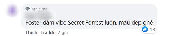 Phim trinh thám của Triệu Lệ Dĩnh tung poster cực nghệ, trông xa như phần 3 của Secret Forest - Ảnh 5.