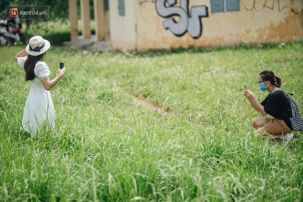 Vô Diện đã ghé thăm triền đê cỏ tranh trắng muốt ở Hà Nội, còn bạn thì sao? - Ảnh 3.