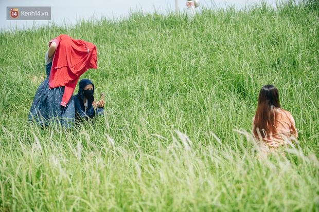 Vô Diện đã ghé thăm triền đê cỏ tranh trắng muốt ở Hà Nội, còn bạn thì sao? - Ảnh 9.