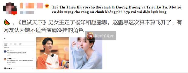 Không phải Dương Mịch, Triệu Lộ Tư mới là nữ chính ở phim cổ trang đóng cùng Dương Dương? - Ảnh 1.