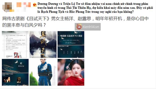 Không phải Dương Mịch, Triệu Lộ Tư mới là nữ chính ở phim cổ trang đóng cùng Dương Dương? - Ảnh 2.