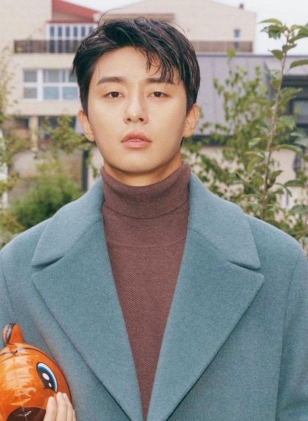 Park Seo Joon làm cameo ở Record Of Youth đáp lễ Park Bo Gum thời Tầng Lớp Itaewon đây mà! - Ảnh 1.