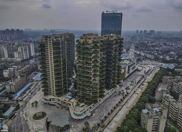 Trung Quốc tham vọng xây thiên đường sinh thái nhưng lại hóa thành phố ma vì… muỗi - Ảnh 9.