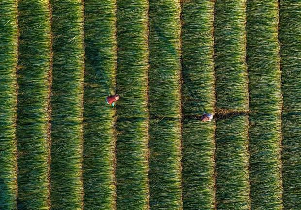 Gặp Khánh Phan - nữ nhiếp ảnh gia đưa cảnh đẹp Việt Nam vươn tầm quốc tế: Hơn 30 giải thưởng lớn nhỏ nhưng nhận phần lớn là do... may mắn - Ảnh 19.