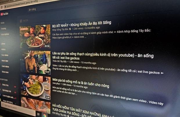 Khi YouTube biến thành nơi để Vlogger kiếm tiền bằng video rác - Ảnh 2.
