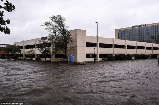 Bão Sally gây lụt lịch sử tại Mỹ, quật đổ cây cối, nhấn chìm đường phố trong biển nước - Ảnh 2.
