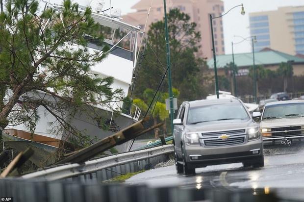 Bão Sally gây lụt lịch sử tại Mỹ, quật đổ cây cối, nhấn chìm đường phố trong biển nước - Ảnh 4.