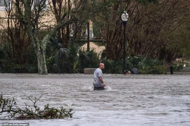 Bão Sally gây lụt lịch sử tại Mỹ, quật đổ cây cối, nhấn chìm đường phố trong biển nước - Ảnh 5.