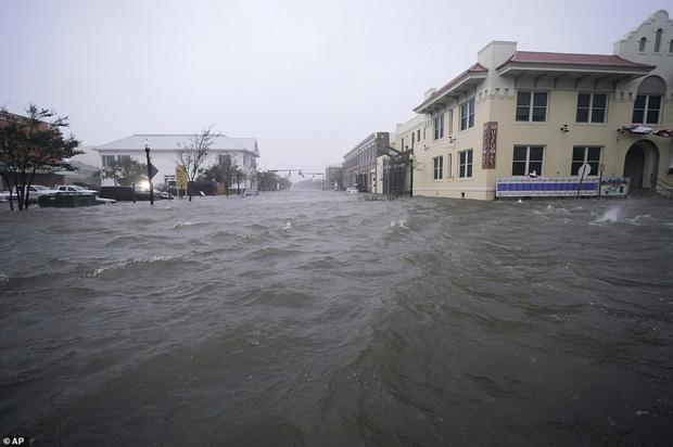 Bão Sally gây lụt lịch sử tại Mỹ, quật đổ cây cối, nhấn chìm đường phố trong biển nước - Ảnh 6.