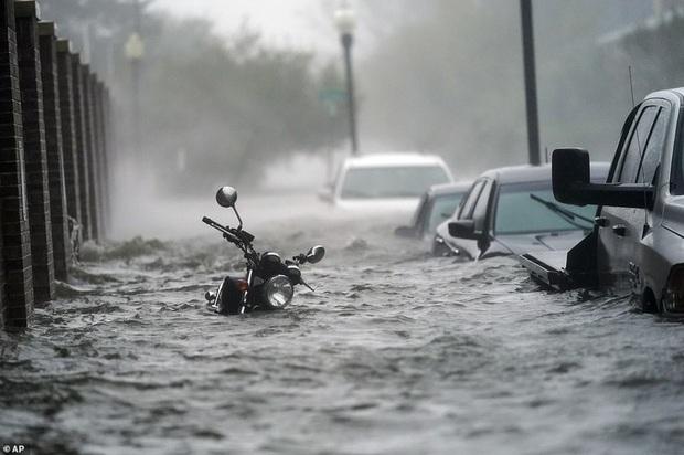 Bão Sally gây lụt lịch sử tại Mỹ, quật đổ cây cối, nhấn chìm đường phố trong biển nước - Ảnh 8.