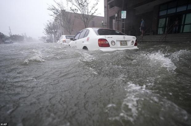 Bão Sally gây lụt lịch sử tại Mỹ, quật đổ cây cối, nhấn chìm đường phố trong biển nước - Ảnh 9.