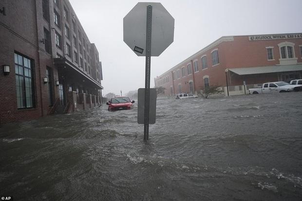 Bão Sally gây lụt lịch sử tại Mỹ, quật đổ cây cối, nhấn chìm đường phố trong biển nước - Ảnh 10.
