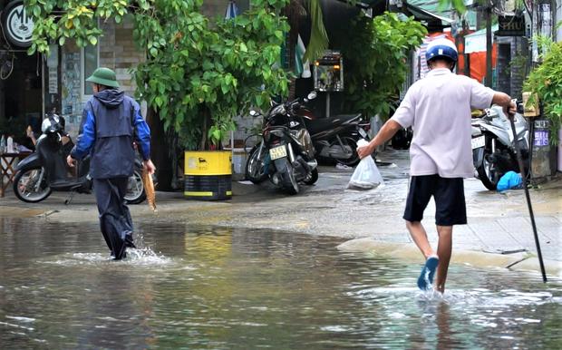 Clip: Người Đà Nẵng thích thú mang rổ ra đường phố bắt cá sau bão số 5 - Ảnh 7.