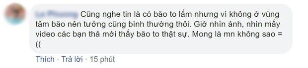 Bối cảnh bom tấn Việt tan hoang vì bão số 5: Hết cây cô đơn Mắt Biếc đến phim trường Gái Già Lắm Chiêu 5 bị quật tơi tả - Ảnh 9.