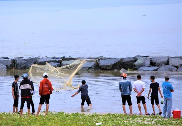 Sau bão, người dân Đà Nẵng ra các miệng cống xả, cửa sông quăng chài bắt cá khủng - Ảnh 1.