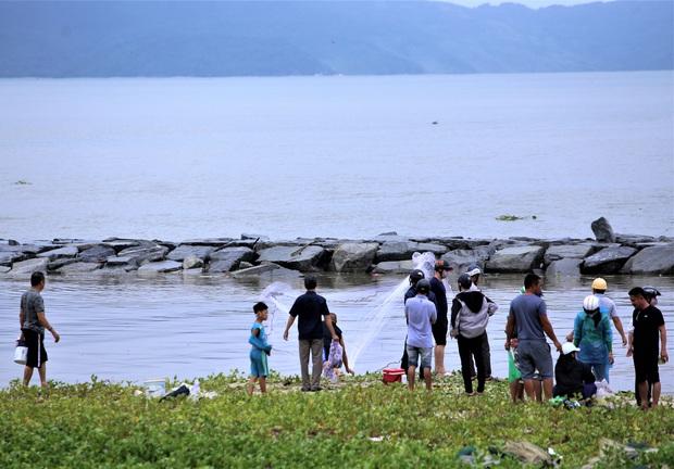 Sau bão, người dân Đà Nẵng ra các miệng cống xả, cửa sông quăng chài bắt cá khủng - Ảnh 6.
