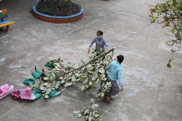 Quảng Bình: Bão đến nhà cô giáo mầm non leo mái nhà chống bão - Ảnh 7.