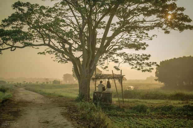 Bối cảnh bom tấn Việt tan hoang vì bão số 5: Hết cây cô đơn Mắt Biếc đến phim trường Gái Già Lắm Chiêu 5 bị quật tơi tả - Ảnh 1.
