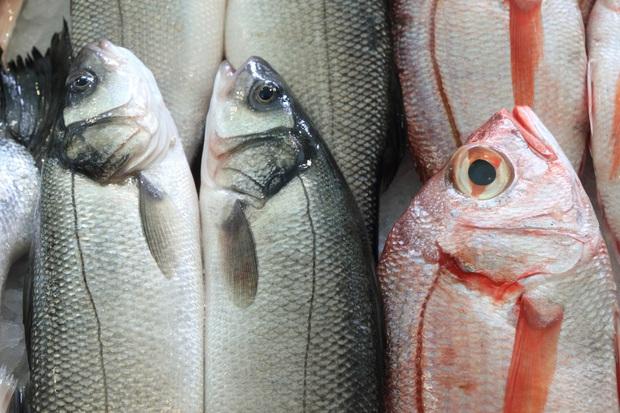 4 loại thực phẩm lạ mà quen chứa đầy kim loại nặng và độc tố, người bán cũng sợ chả dám ăn - Ảnh 1.