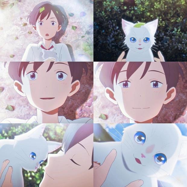 Chuyện cô gái hoá mèo để ở cạnh crush A Whisker Away: Tình đơn phương vừa ngọt vừa cay bên lũ mèo cưng hết nấc - Ảnh 11.