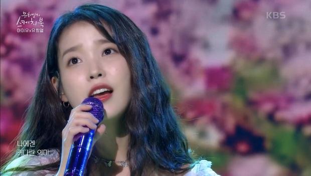 IU diễn liền tù tì 17 ca khúc trong show kỉ niệm 12 năm ca hát phát sóng trên truyền hình, lập tức all-kill trên mọi mặt trận! - Ảnh 3.
