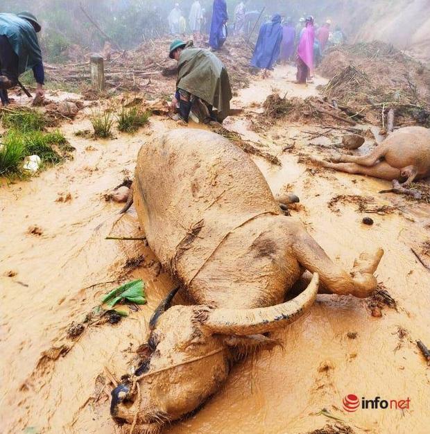 Mưa lớn, sạt lở đất, bản làng biên giới Nghệ An bị cô lập, 1 người tử vong - Ảnh 3.