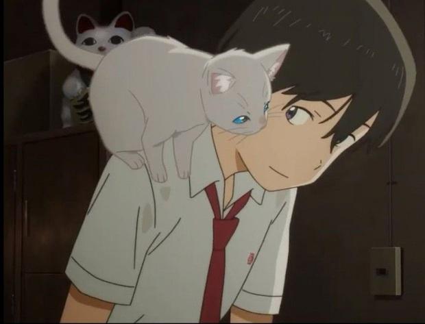 Chuyện cô gái hoá mèo để ở cạnh crush A Whisker Away: Tình đơn phương vừa ngọt vừa cay bên lũ mèo cưng hết nấc - Ảnh 6.