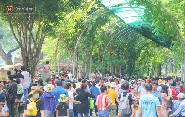 ẢNH: Thảo Cầm Viên đông nghẹt, hàng ngàn người dân đổ về vui chơi dịp 2/9 sau lời kêu gọi giải cứu bầy thú - Ảnh 3.