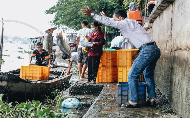 Ảnh, clip: Bất lực đứng nhìn đội quân chích điện vớt cả trăm ký cá phóng sinh trước mặt để bán lại với giá 50.000 đồng/kg - Ảnh 5.