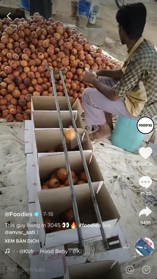 Bất ngờ trước cách chàng trai nước ngoài phân loại trái cây cực thông minh, tất cả đều nhờ… 2 thanh sắt như thế này! - Ảnh 1.