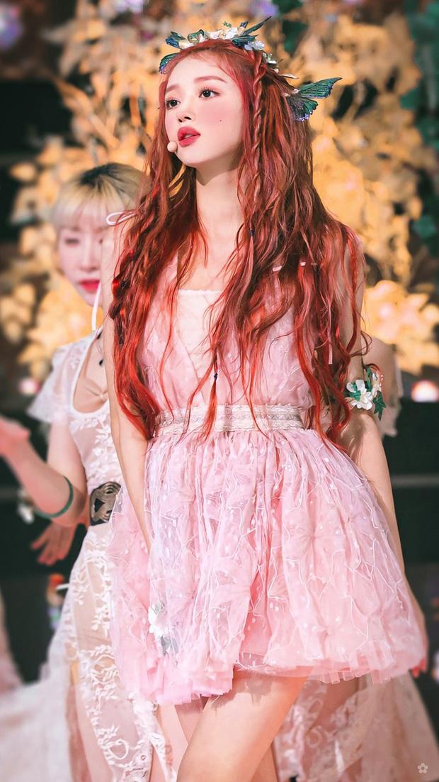 Nhan sắc mỹ nhân vừa vượt mặt BLACKPINK và nữ thần Red Velvet: Trên sân khấu gây sốt vì đẹp đến mức tưởng tiên tử đời thực - Ảnh 5.