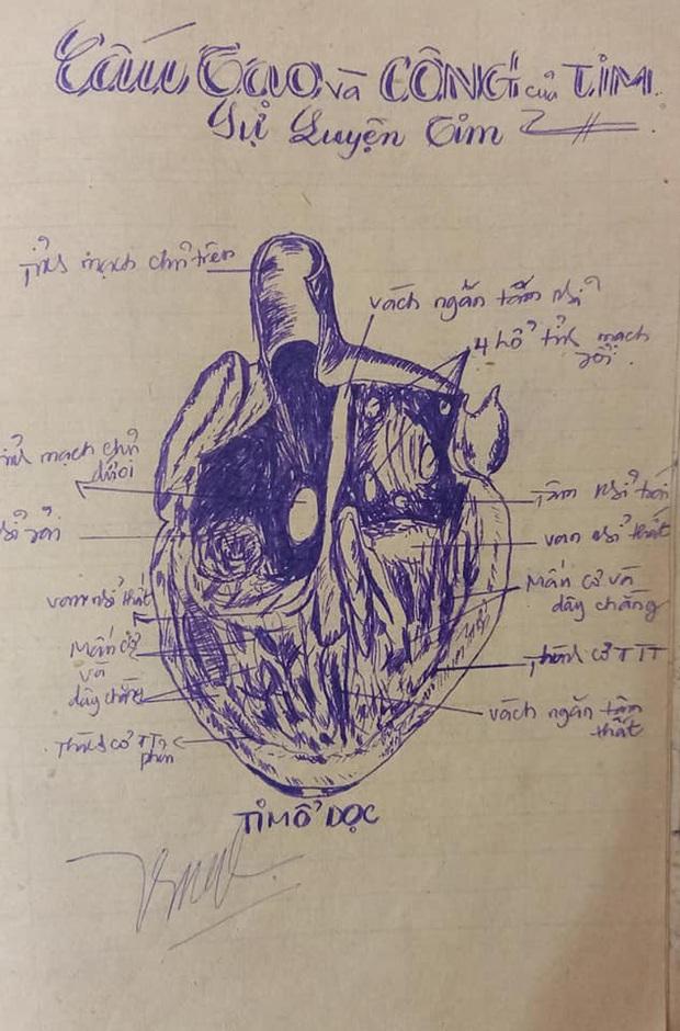 Tò mò xem mẹ học môn Sinh thời xưa thế nào, nữ sinh trầm trồ vì quyển vở toàn tranh vẽ tay mà giống sách giáo khoa từng chi tiết - Ảnh 2.