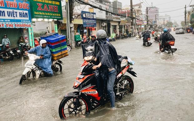 """TP.HCM: Chợ Thủ Đức ngập nặng từ trong ra ngoài do mưa lớn, nhiều tiểu thương """"khóc ròng"""" - Ảnh 1."""