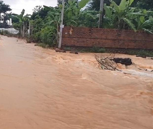 Bình Phước di dân vì nước bất ngờ dâng cao gần 2m - Ảnh 2.