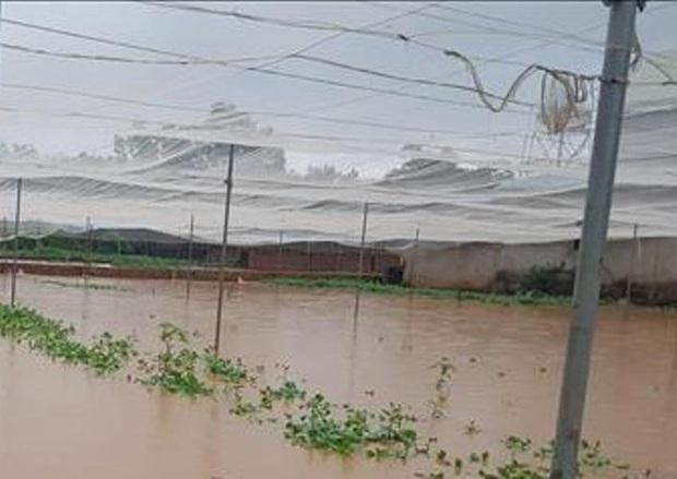 Bình Phước di dân vì nước bất ngờ dâng cao gần 2m - Ảnh 3.