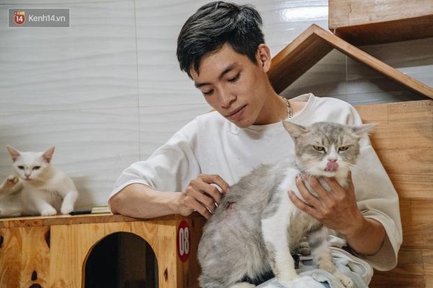 Chàng trai 24 tuổi bỏ công việc ổn định để cứu trợ mèo, mái ấm của các bé mèo lên hãng thông tấn AFP của Pháp - Ảnh 7.