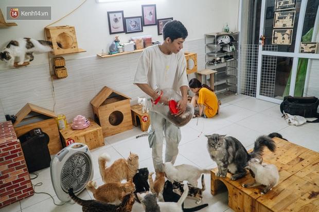 Chàng trai 24 tuổi bỏ công việc ổn định để cứu trợ mèo, mái ấm của các bé mèo lên hãng thông tấn AFP của Pháp - Ảnh 2.