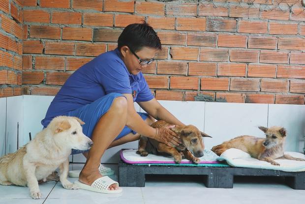 Người phụ nữ nuôi chó mèo bị bại liệt suốt 6 năm, bỏ cả công việc để chăm sóc đàn con của mình - Ảnh 7.