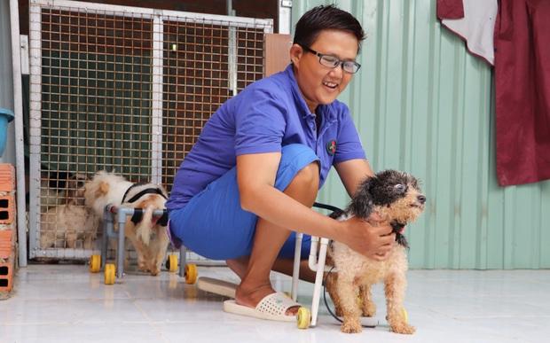 Người phụ nữ nuôi chó mèo bị bại liệt suốt 6 năm, bỏ cả công việc để chăm sóc đàn con của mình - Ảnh 11.