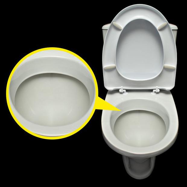 Tại sao bồn cầu toilet luôn có màu trắng dù nó rất dễ bẩn? Lý do phía sau tưởng vô lý mà hóa ra cực kỳ thuyết phục đấy - Ảnh 1.