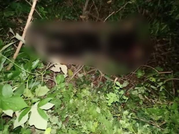 Hải Dương: Phát hiện thi thể nữ đang phân huỷ trong rừng, nghi là giáo viên mất tích hơn 1 tháng trước - Ảnh 1.
