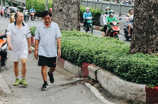 Sau vụ cây xanh bật gốc đè chết người: Vẫn còn nhiều cây đã già cỗi có rễ lộ thiên, nhánh vươn ra mặt đường ở Sài Gòn - Ảnh 14.