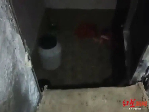 Ảnh hưởng phim người lớn, gã đàn ông ế vợ bắt cóc thiếu nữ 16 tuổi giam cầm 24 ngày dưới hầm rồi hành hạ đến thân tàn ma dại - Ảnh 2.