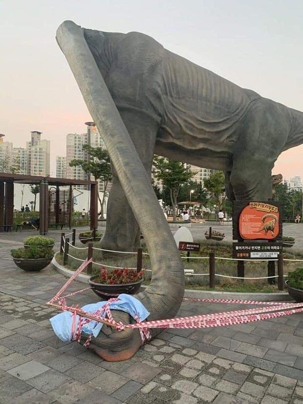 Đúng như mong muốn của cư dân mạng, chú khủng long gãy cổ trong công viên ở Busan đã được gây mê cấp cứu  - Ảnh 3.