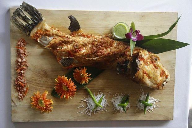 """Loài cá có hình thù xấu xí nhưng được mệnh danh là """"mỹ nhân ngư"""" Việt Nam, giới đại gia chi cả triệu để ăn dù cực độc - Ảnh 3."""
