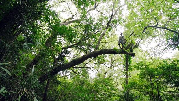 Chàng trai 32 tuổi chi gần 1,7 tỷ mỗi năm chỉ để leo rừng vượt thác ăn hoa quả dại - Ảnh 7.