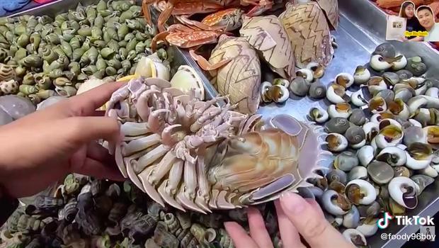 """Loại hải sản được cho là ngon hơn cả tôm hùm ở Việt Nam, vì hiếm có khó tìm nên được rao bán với giá """"đắt xắt ra miếng""""? - Ảnh 3."""